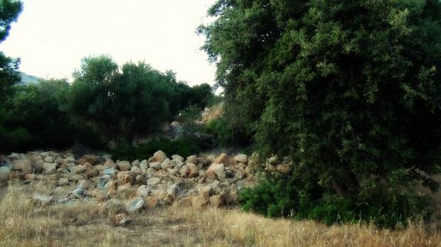 Bible lands © 2015 Simon Peter Sutherland